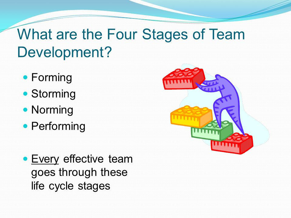 What are the Four Stages of Team Development