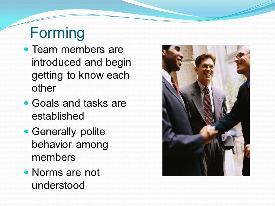 Forming Team members are introduced and begin getting to know each other. Goals and tasks are established.