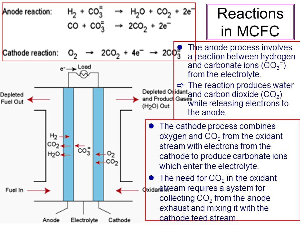 Reactions in MCFC The anode process involves a reaction between hydrogen and carbonate ions (CO3=) from the electrolyte.