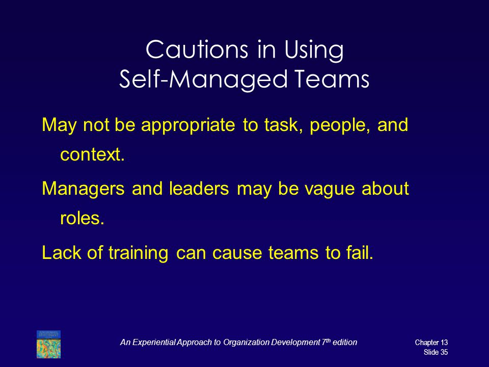 Cautions in Using Self-Managed Teams