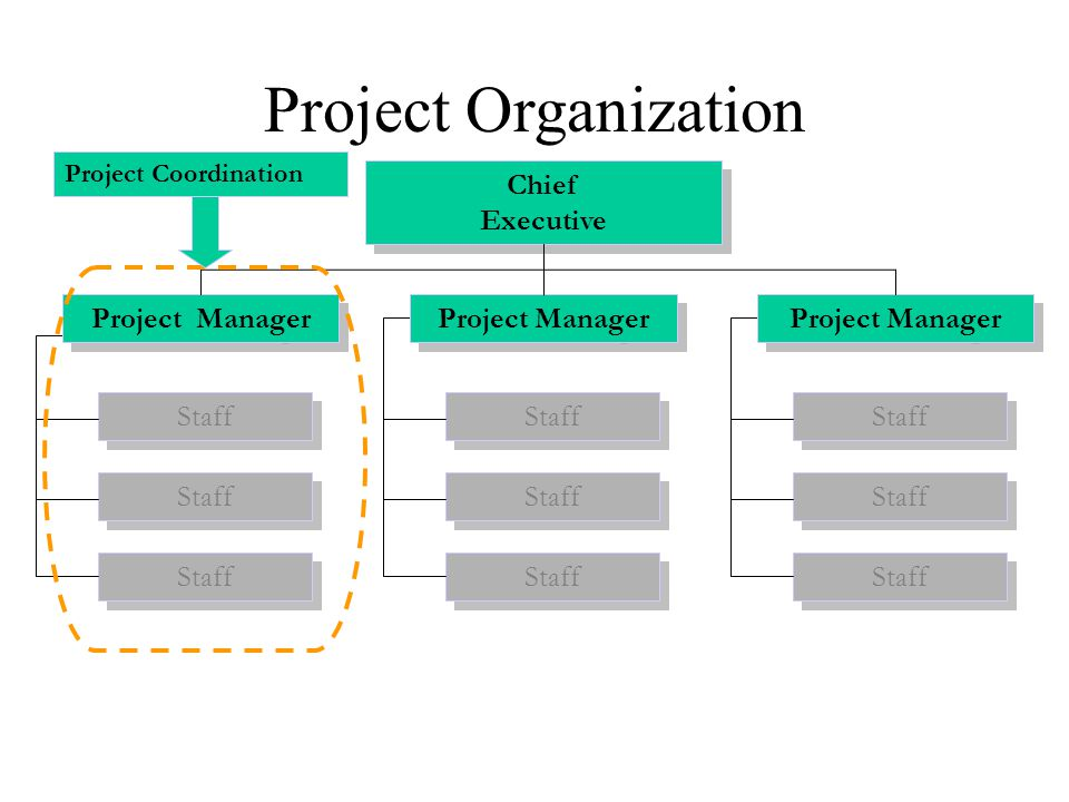 Project Organization Chief Executive Project Manager Project Manager
