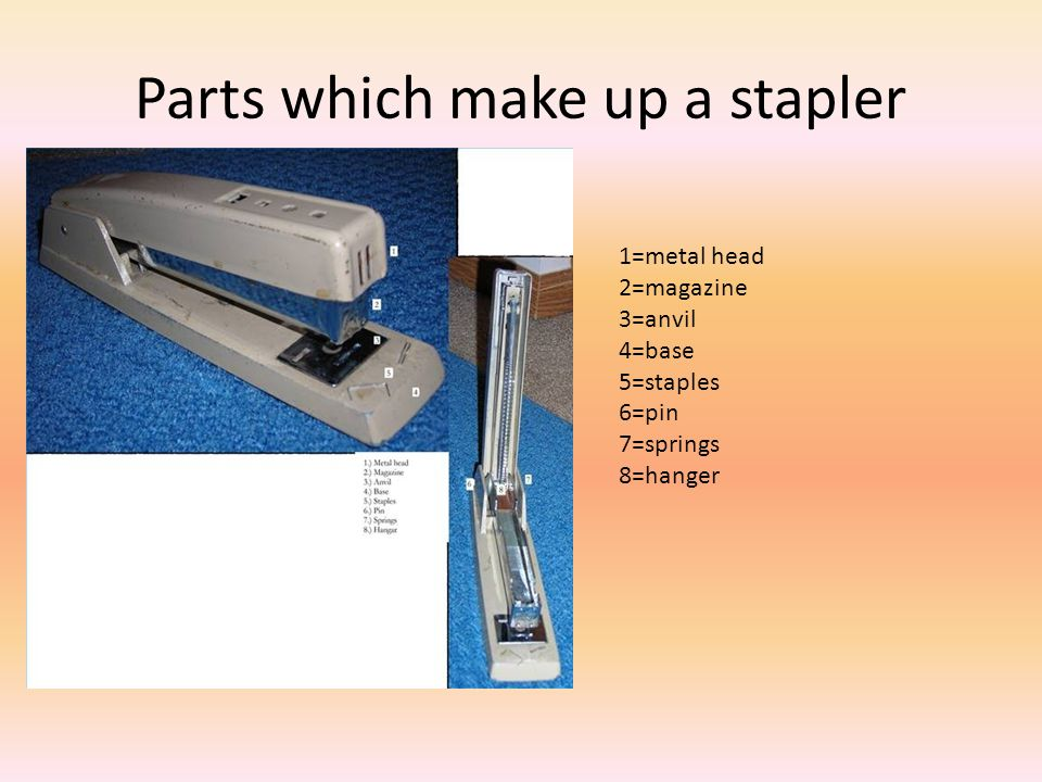 Parts which make up a stapler