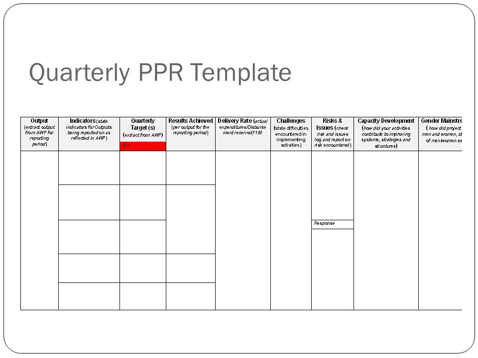 Quarterly PPR Template