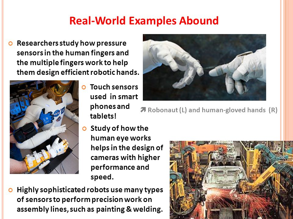 Real-World Examples Abound