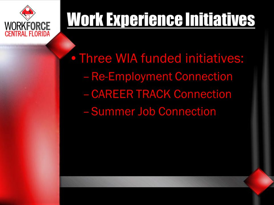 Work Experience Initiatives