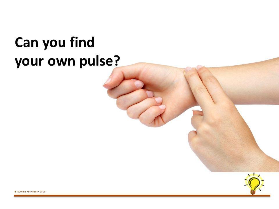 Can you find your own pulse