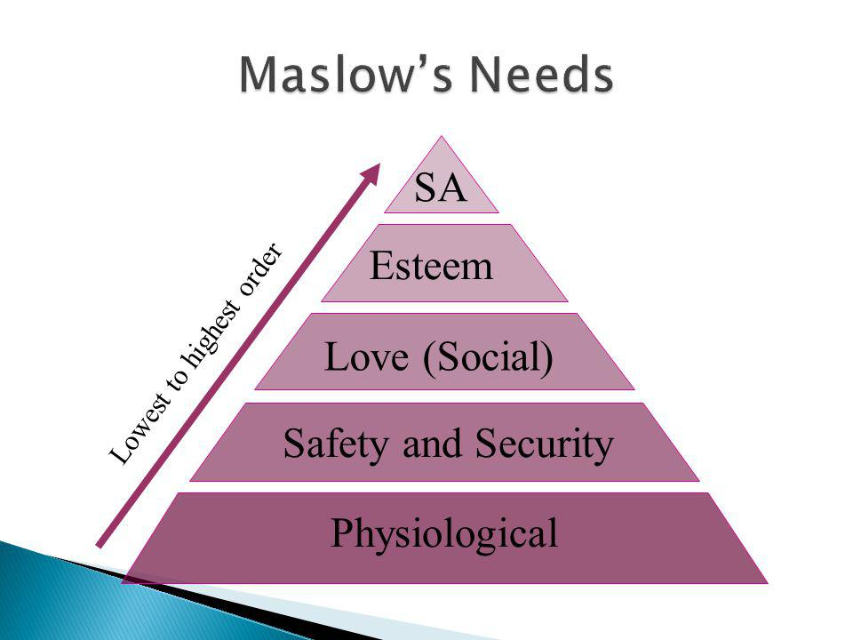 Maslow's Needs SA Esteem Love (Social) Safety and Security
