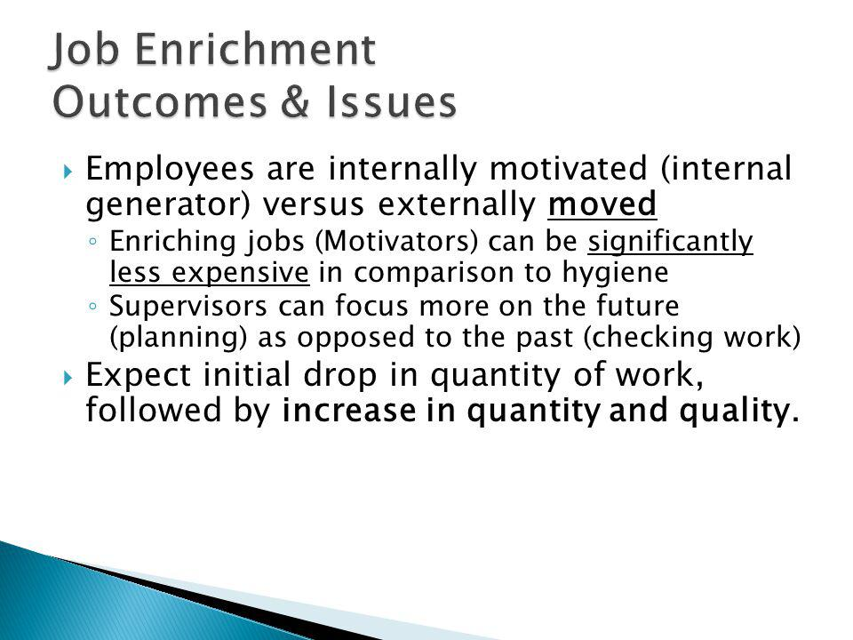 Job Enrichment Outcomes & Issues