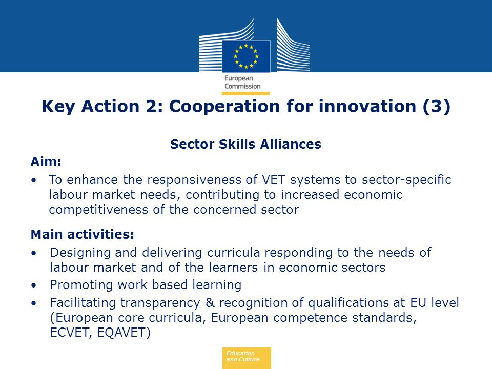 Key Action 2: Cooperation for innovation (3) Sector Skills Alliances