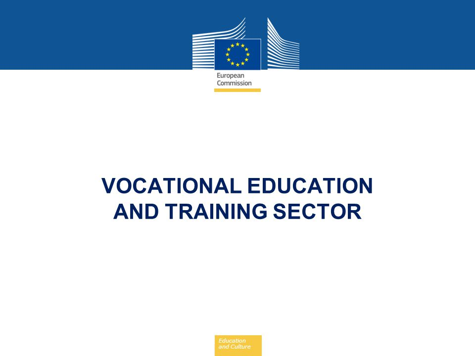 VOCATIONAL EDUCATION AND TRAINING SECTOR