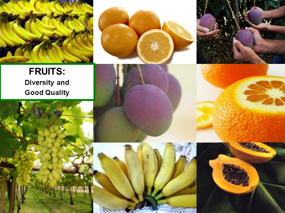 FRUITS: Diversity and Good Quality 16