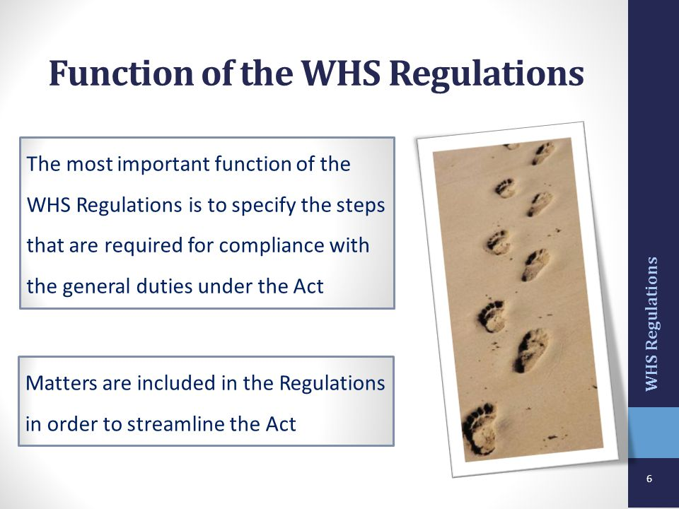 Function of the WHS Regulations