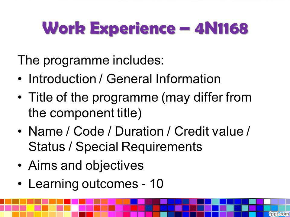 Work Experience – 4N1168 The programme includes: