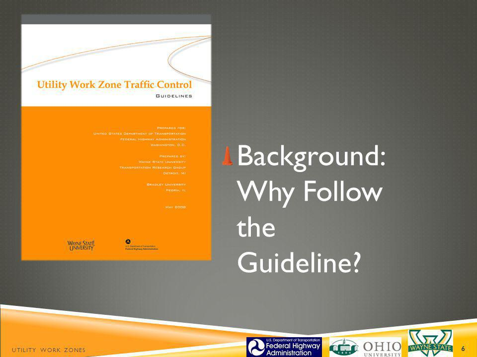 Background: Why Follow the Guideline