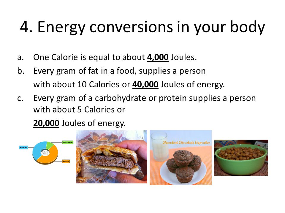 4. Energy conversions in your body