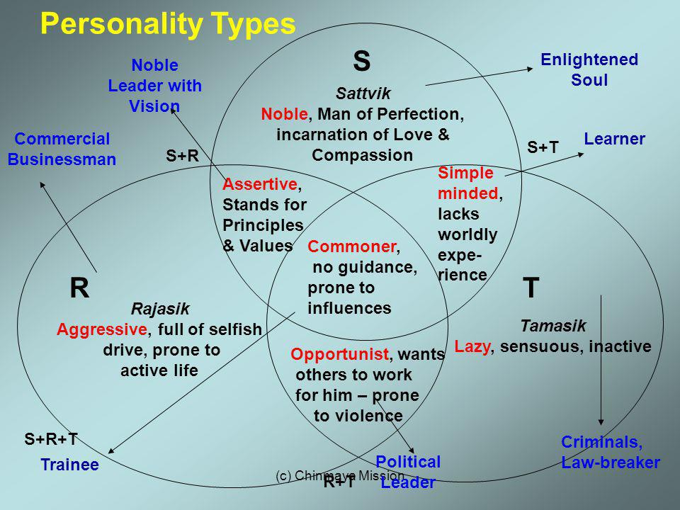 Personality Types S R T Enlightened Soul Noble Leader with Vision