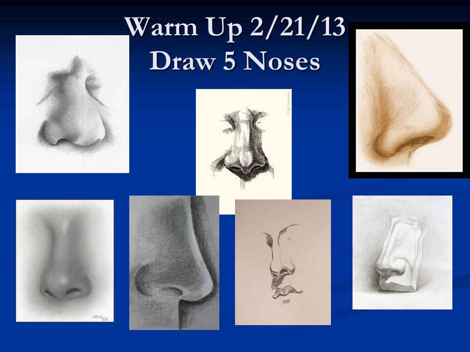 Warm Up 2/21/13 Draw 5 Noses