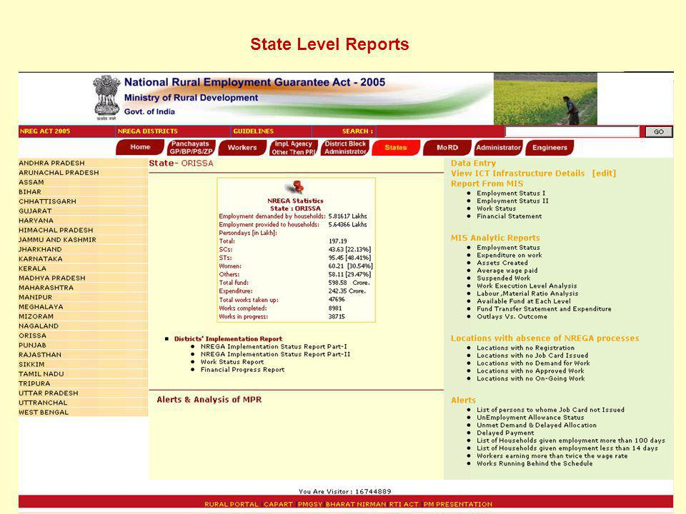 State Level Reports