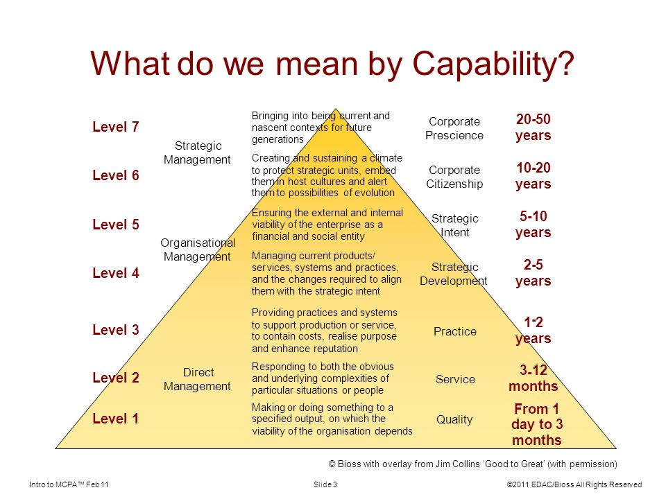 What do we mean by Capability