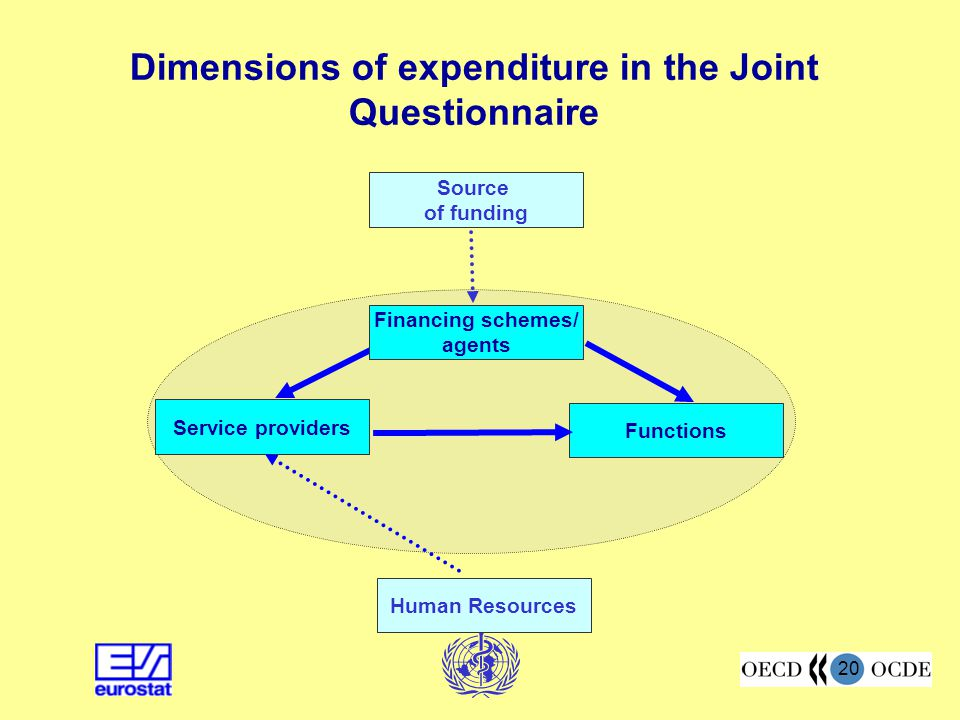 Dimensions of expenditure in the Joint Questionnaire