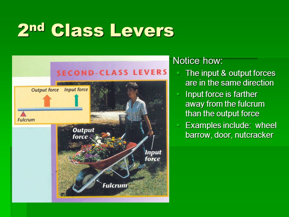 2nd Class Levers Notice how: