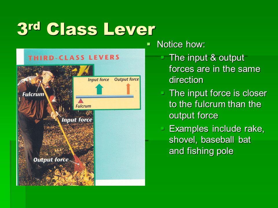 3rd Class Lever Notice how: