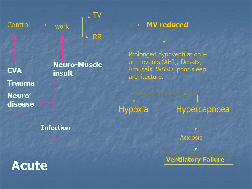 Acute Hypoxia Hypercapnoea TV Control MV reduced RR