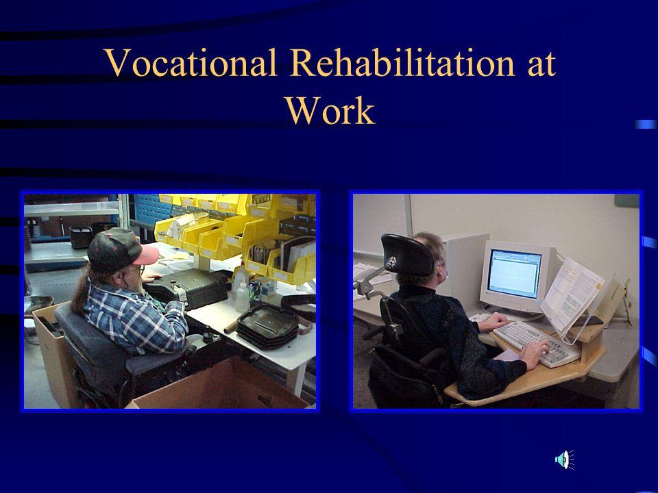 Vocational Rehabilitation at Work