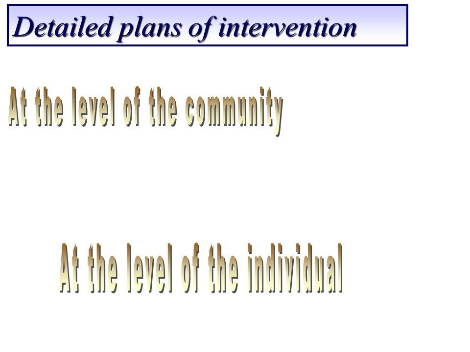 Detailed plans of intervention