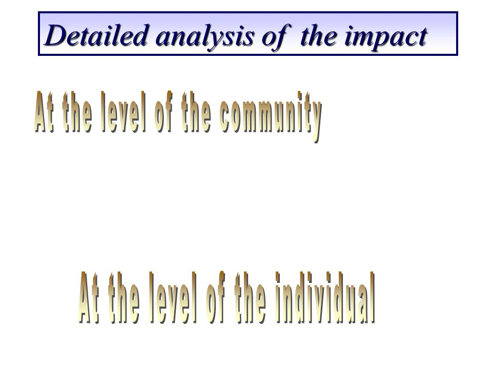Detailed analysis of the impact