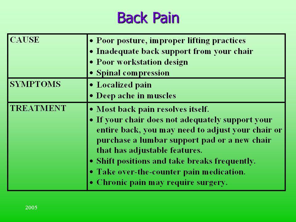 Back Pain 2005