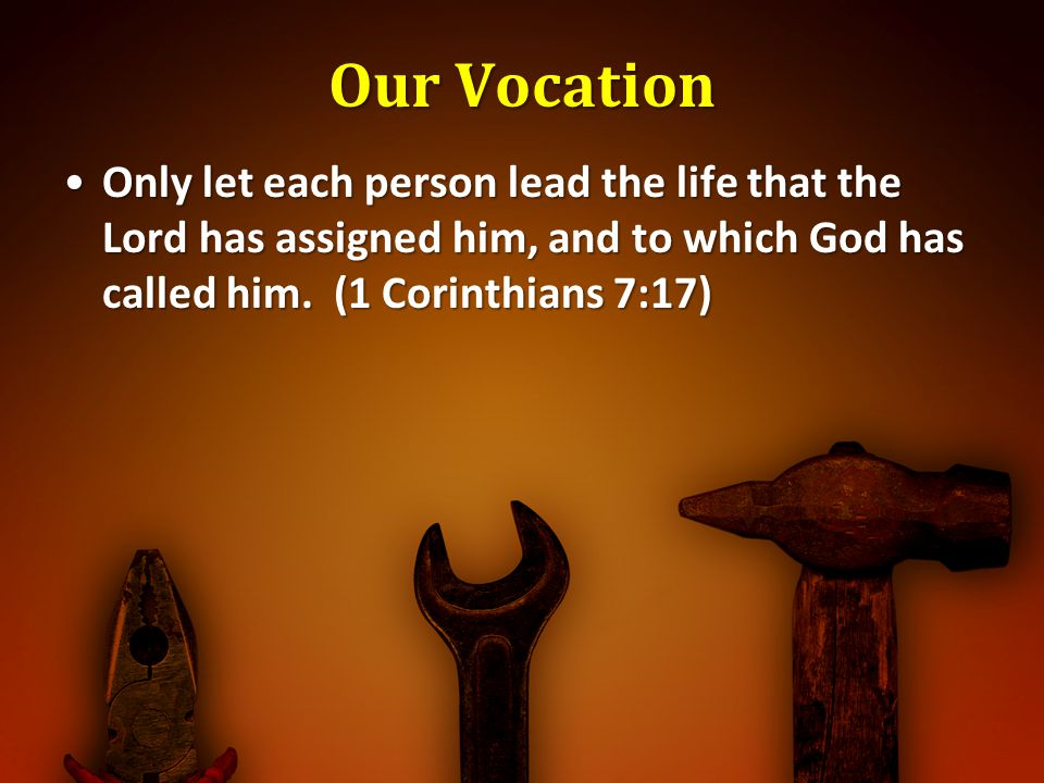 Our Vocation Only let each person lead the life that the Lord has assigned him, and to which God has called him.