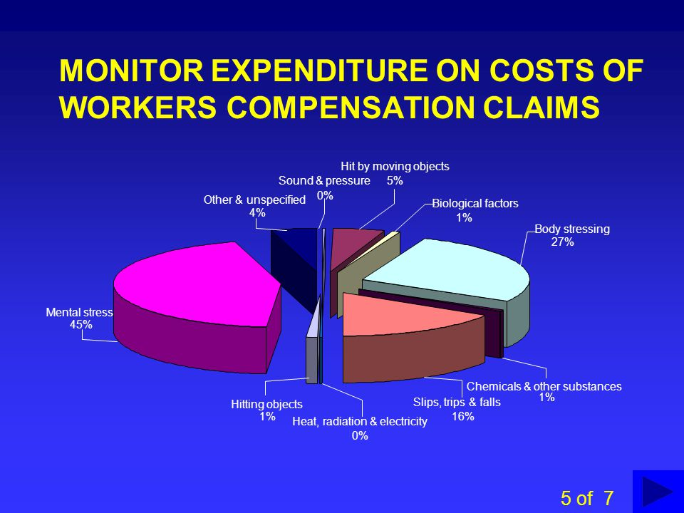 MONITOR EXPENDITURE ON COSTS OF WORKERS COMPENSATION CLAIMS