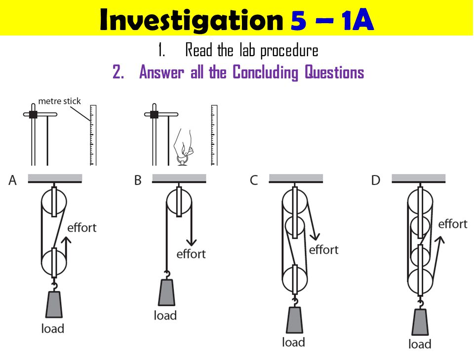Answer all the Concluding Questions