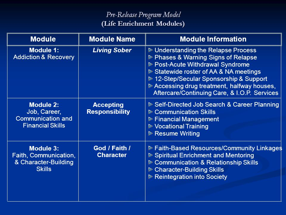 Pre-Release Program Model (Life Enrichment Modules)