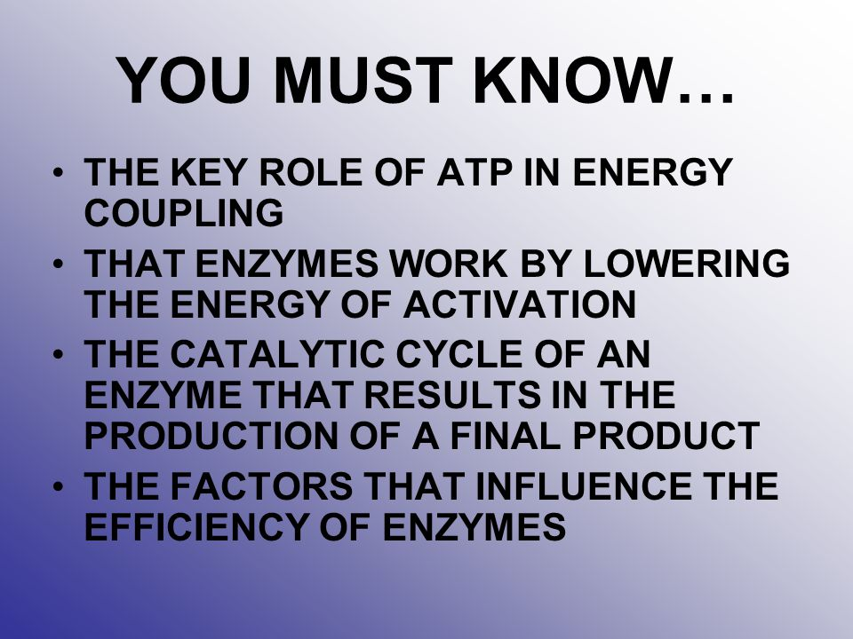 YOU MUST KNOW… THE KEY ROLE OF ATP IN ENERGY COUPLING