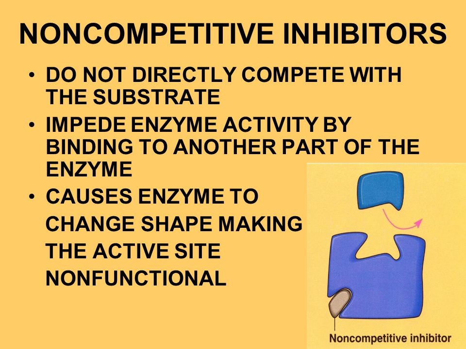 NONCOMPETITIVE INHIBITORS