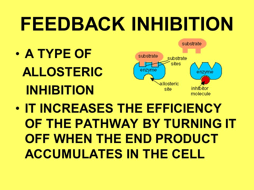 FEEDBACK INHIBITION A TYPE OF ALLOSTERIC INHIBITION