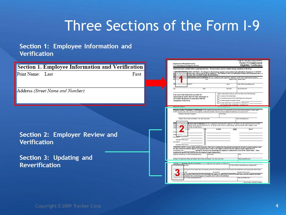 Three Sections of the Form I-9