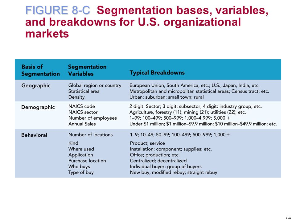 FIGURE 8-C Segmentation bases, variables, and breakdowns for U. S