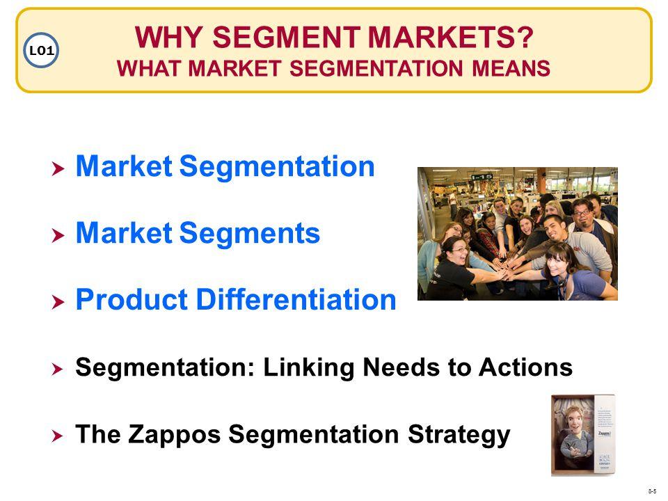WHY SEGMENT MARKETS WHAT MARKET SEGMENTATION MEANS