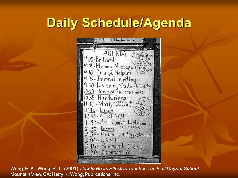 Daily Schedule/Agenda