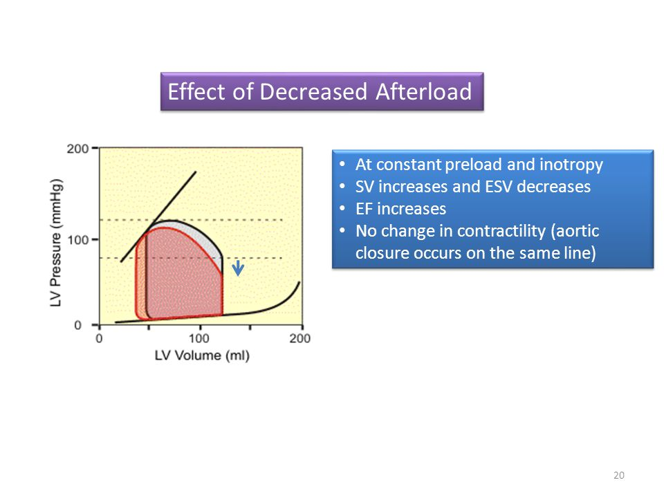 Effect of Decreased Afterload