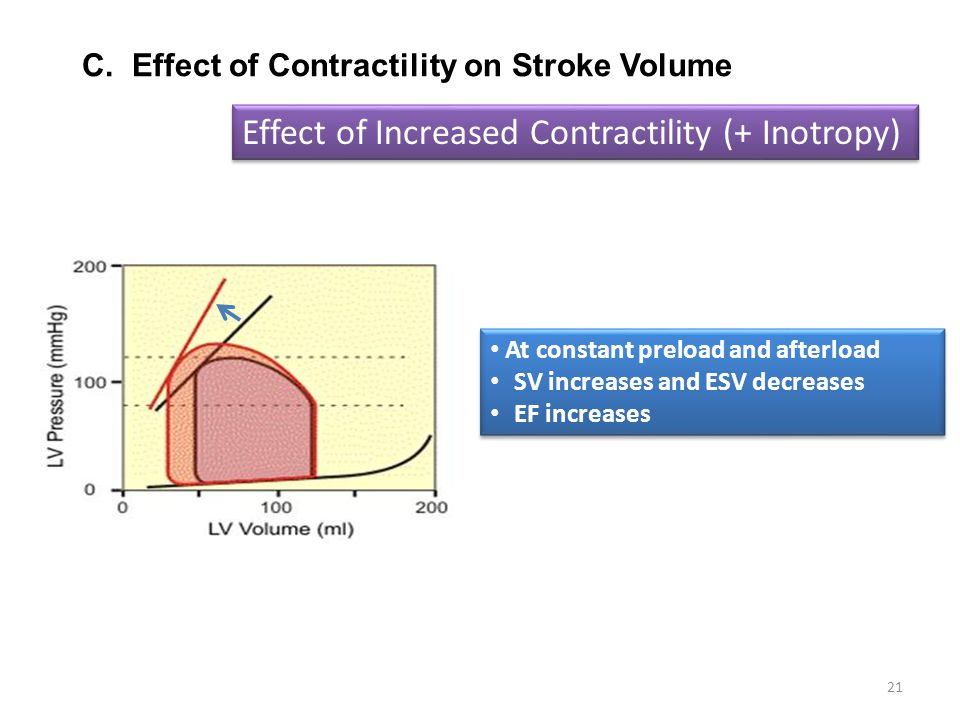 Effect of Increased Contractility (+ Inotropy)