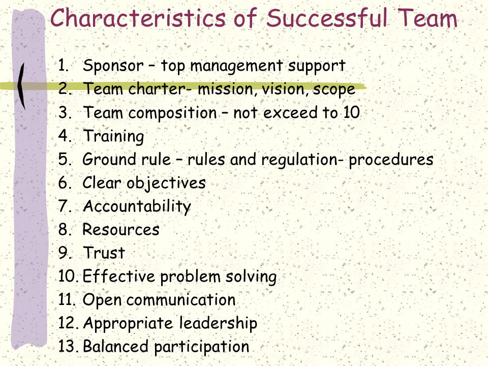 Characteristics of Successful Team