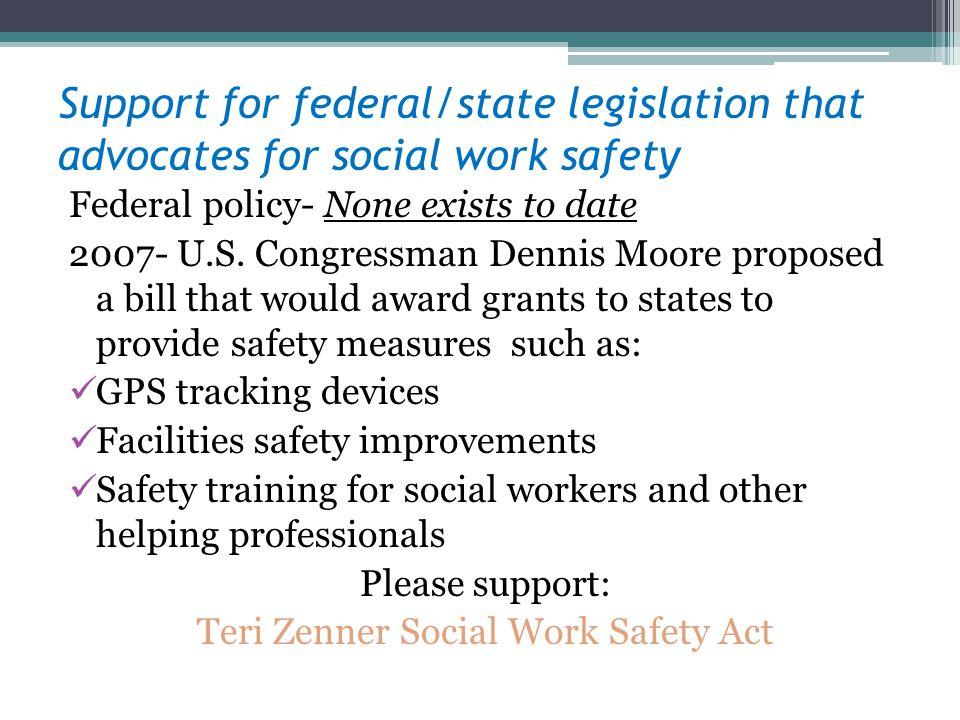 Teri Zenner Social Work Safety Act