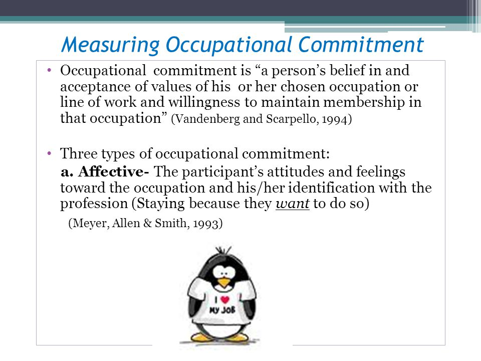 Measuring Occupational Commitment