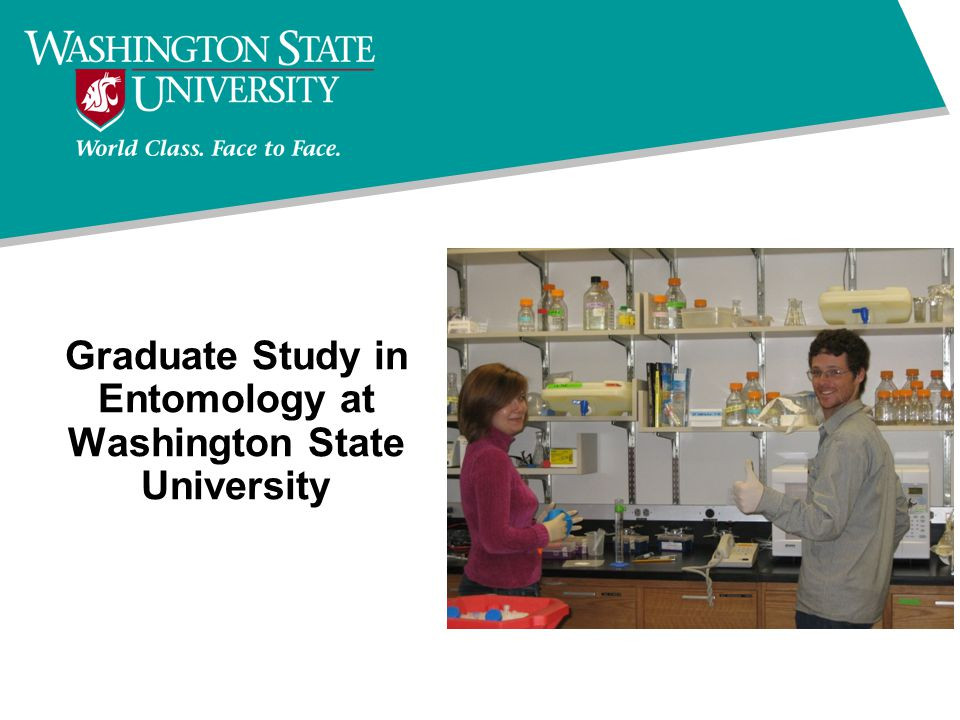 Graduate Study in Entomology at Washington State University