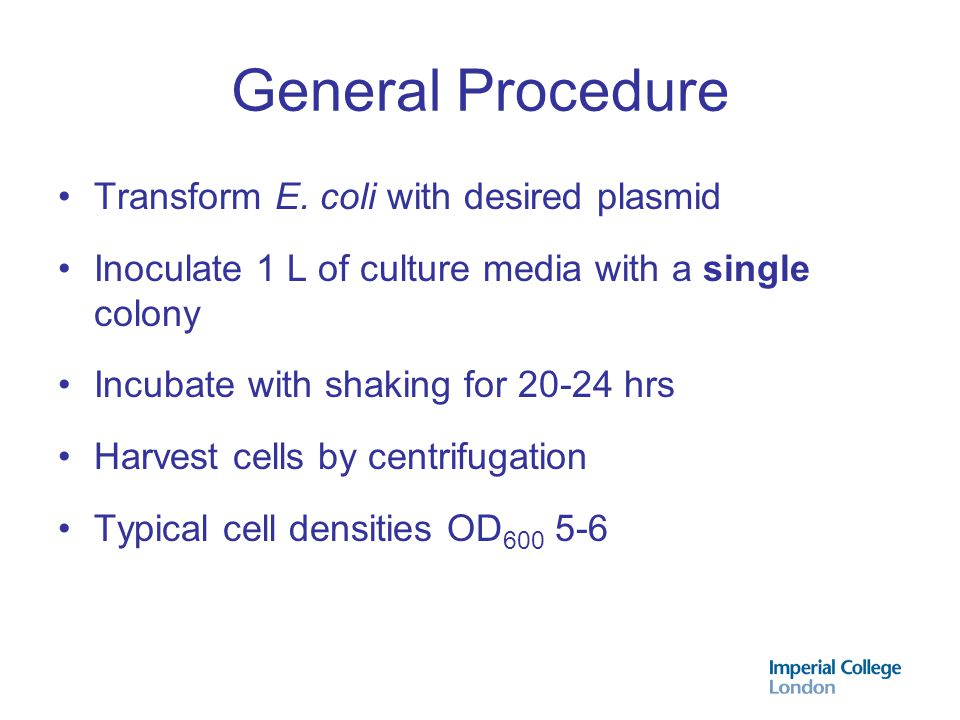 General Procedure Transform E. coli with desired plasmid
