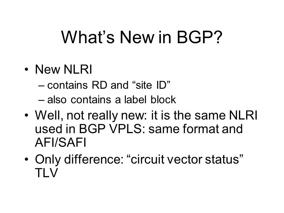 What's New in BGP New NLRI